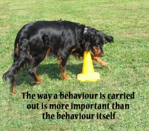 """The way a behaviour is carried out is more important than the behaviour itself"