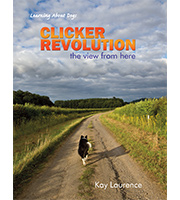 Cover Clicker Revolution