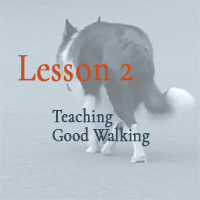 Teaching Good Walking